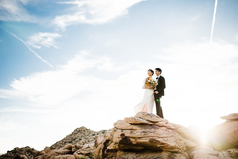 Epic Desert Styled Joshua Tree Wedding