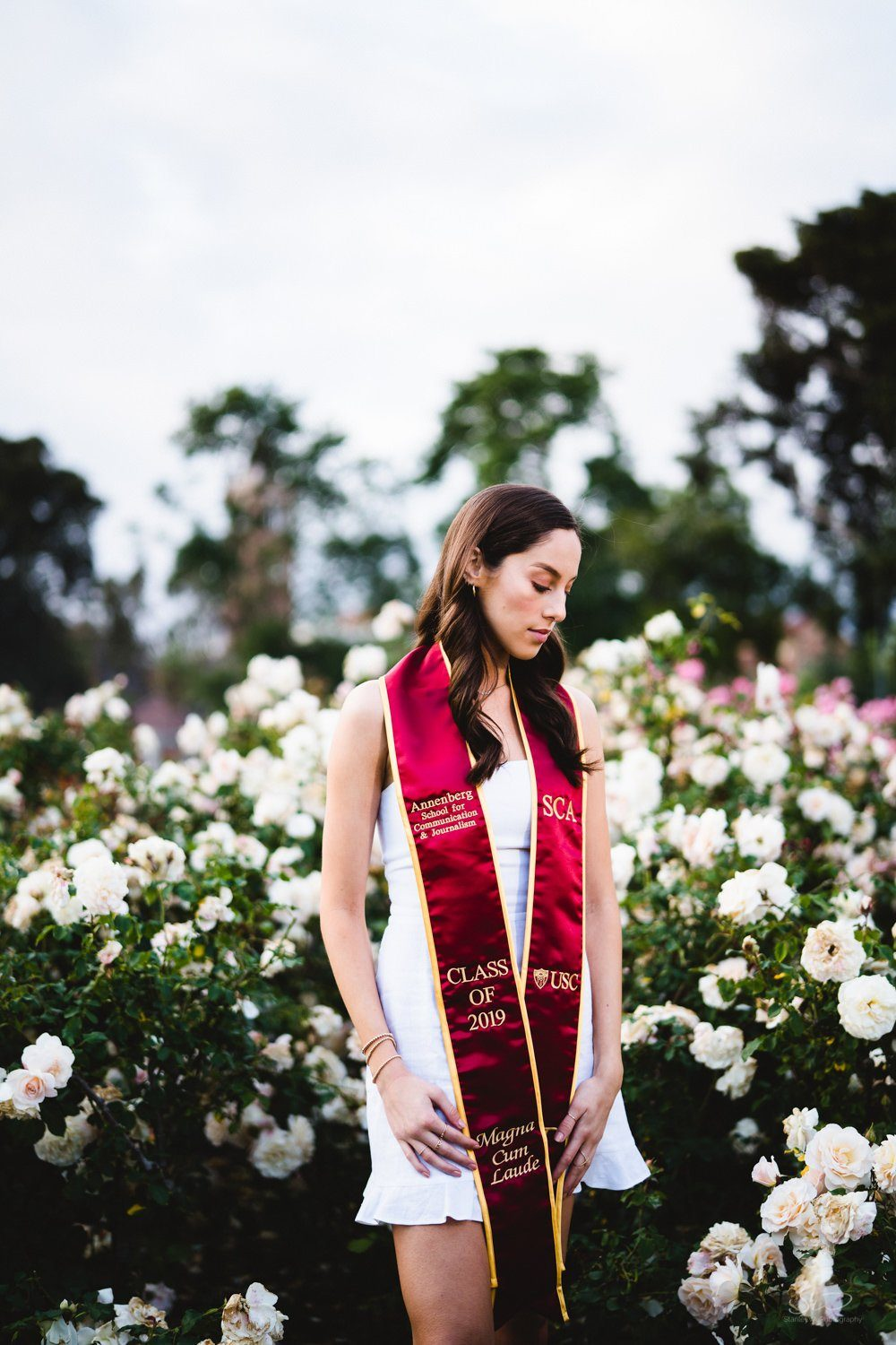 graduating senior with sash standing in the usc rose garden | usc graduation photographer los angeles
